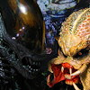 Alien vs Predator online game
