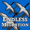 Endless Migration online game
